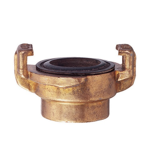 Pneumatic Hose Quick Release Claw Coupling Brass, Female BSP