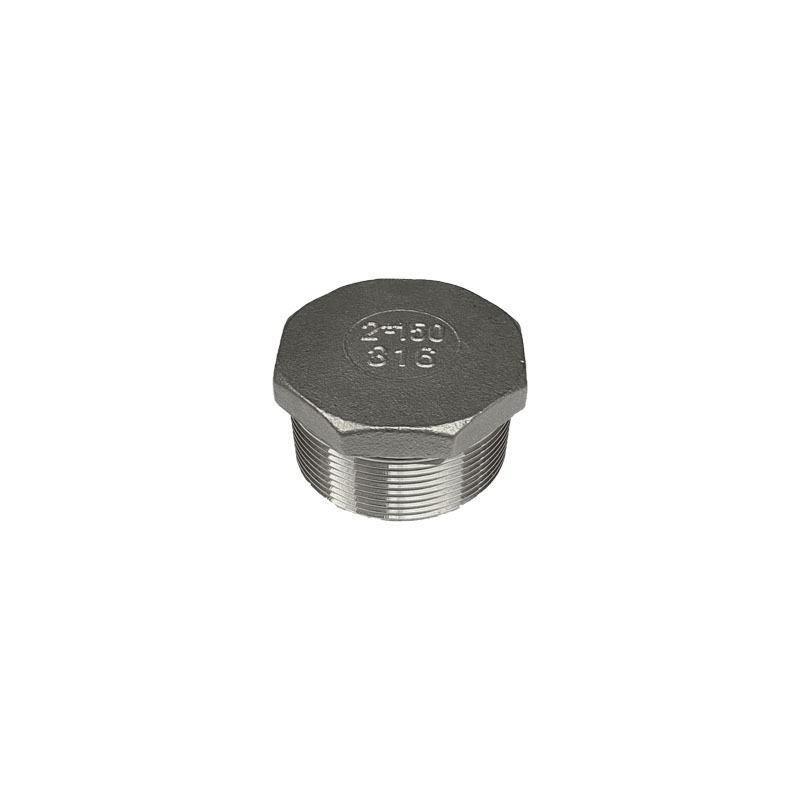 Stainless Steel Hexagonal Head Plug, BSP